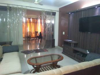 1050 sqft, 2 bhk Apartment in Omaxe Orchid Avenue MU Greater Noida, Greater Noida at Rs. 13000