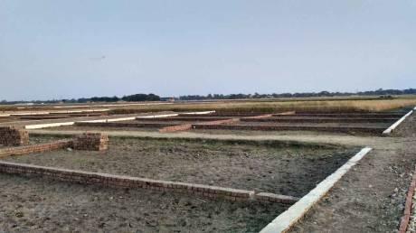 1000 sqft, Plot in Builder darshi GT Road, Dhanbad at Rs. 6.5100 Lacs