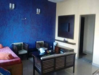 2077 sqft, 3 bhk Apartment in Spaze Privy Sector 72, Gurgaon at Rs. 35000