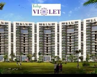 2010 sqft, 4 bhk Apartment in Tulip Violet Sector 69, Gurgaon at Rs. 1.1800 Cr