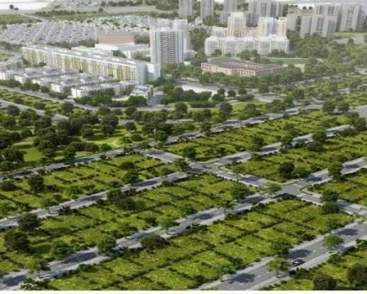2367 sqft, Plot in HUDA Plot Sector 38 Sector 38, Gurgaon at Rs. 2.1000 Cr
