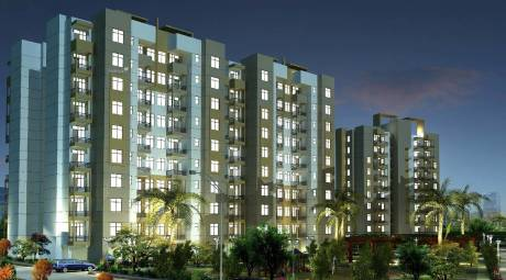 1350 sqft, 2 bhk Apartment in Orris Carnation Residency Sector 85, Gurgaon at Rs. 60.7500 Lacs