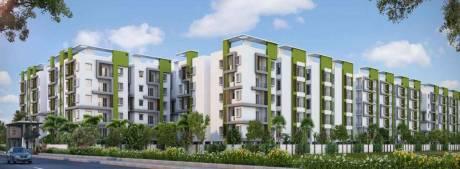 1140 sqft, 2 bhk Apartment in Novus Infra Pvt Ltd Florence Village Gajuwaka, Visakhapatnam at Rs. 28.9500 Lacs