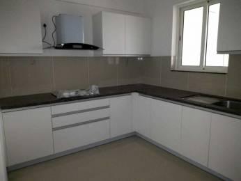 1222 sqft, 2 bhk Apartment in Vasudha Sai Eshanya C D Wing Balewadi, Pune at Rs. 20000