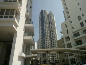 3000 sqft, 4 bhk Apartment in CGHS The Divyalok Sector 21 D, Faridabad at Rs. 1.1500 Cr