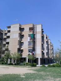 750 sqft, 1 bhk Apartment in Builder Project Sector 45 Faridabad, Faridabad at Rs. 45.0000 Lacs