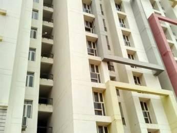 1200 sqft, 3 bhk Apartment in Builder Project Pratap Nagar, Jaipur at Rs. 9000