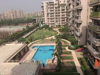 1750 sqft, 3 bhk Apartment in Supertech 34 Pavilion Sector 34, Noida at Rs. 28000