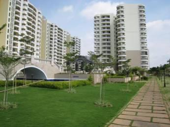 1614 sqft, 3 bhk Apartment in Purva Purva Venezia Yelahanka, Bangalore at Rs. 28000