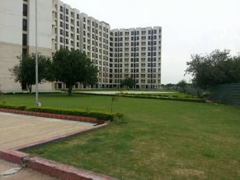 425 sqft, 1 bhk Apartment in Builder Project Knowledge Park 5 GREATER NOIDA WEST, Greater Noida at Rs. 15.0000 Lacs