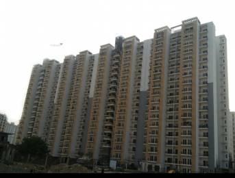 1495 sqft, 3 bhk Apartment in Panchsheel Pratishtha Sector 75, Noida at Rs. 81.0000 Lacs