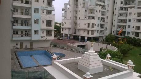 1450 sqft, 3 bhk Apartment in Builder Project Ajmer Road, Jaipur at Rs. 11500