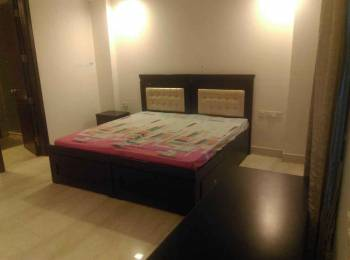 1020 sqft, 2 bhk BuilderFloor in SDS NRI Residency Sector 45, Noida at Rs. 20000