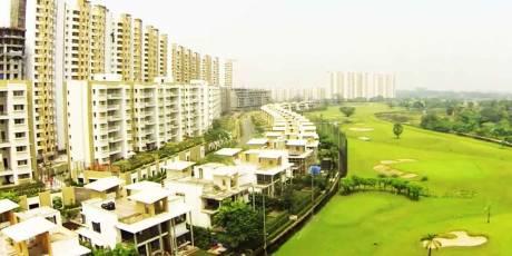 1503 sqft, 2 bhk Apartment in Lodha Exotica Dombivali East, Mumbai at Rs. 18000