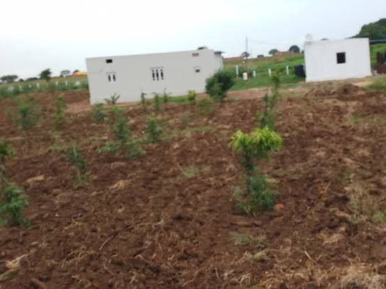 2700 sqft, Plot in Builder Vardhan Developers Farm Land Srisailam Highway Nedunur, Hyderabad at Rs. 6.0000 Lacs