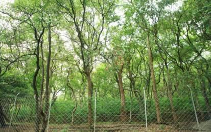 3600 sqft, Plot in Builder SRR Gachibowli Paradise County Linghampally, Hyderabad at Rs. 42.0000 Lacs