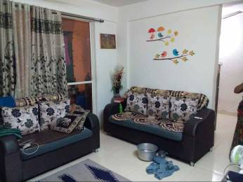 705 sqft, 1 bhk Apartment in Bora Group Pune Forest Castle Ambegaon Budruk, Pune at Rs. 28.0000 Lacs