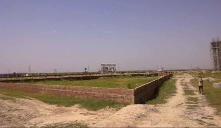 675 sqft, Plot in Wisteria Nav City Sector 123 Mohali, Mohali at Rs. 12.8500 Lacs