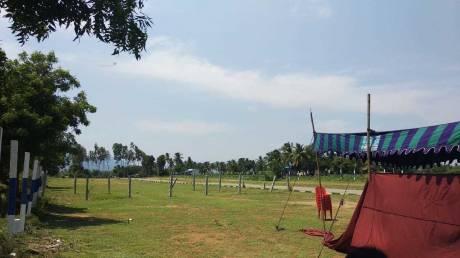 1200 sqft, Plot in Builder Annai Terasa Nagar Abdullah puram, Vellore at Rs. 7.8000 Lacs