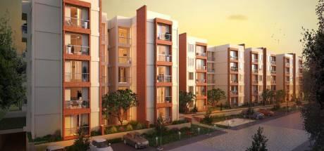 1262 sqft, 2 bhk Apartment in NR Windgates Jakkur, Bangalore at Rs. 55.0000 Lacs