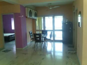 1200 sqft, 3 bhk Apartment in S Construction Suvo Apartment Nayabad, Kolkata at Rs. 22000