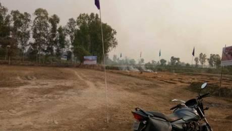 5000 sqft, Plot in Builder Main Kisanpat Highway nagram road, Lucknow at Rs. 12.5000 Lacs