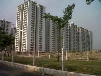 450 sqft, 1 bhk Apartment in Avj AVJ Heightss ZETA Sector, Greater Noida at Rs. 6000