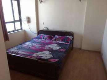 735 sqft, 1 bhk Apartment in Builder senior citizen P3 Road, Greater Noida at Rs. 7000