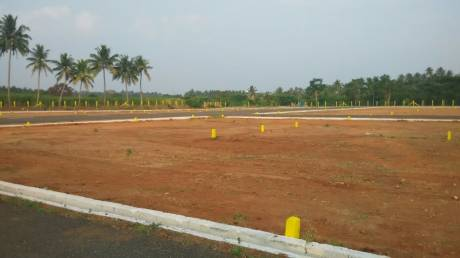1500 sqft, Plot in Builder Direct Sale Only Kalapatti, Coimbatore at Rs. 3.5000 Lacs