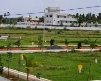 360 sqft, Plot in Ansal Ansal Paradise Crystal Greater Noida West, Greater Noida at Rs. 1.4500 Lacs