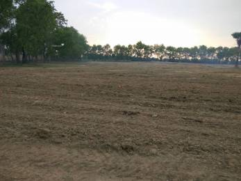 1250 sqft, Plot in Builder Shine valley Bongara Rani Road, Guwahati at Rs. 2.5125 Lacs