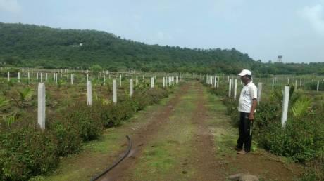 3229 sqft, Plot in Builder Sea Breeze Nagaon, Alibaugh at Rs. 14.0000 Lacs