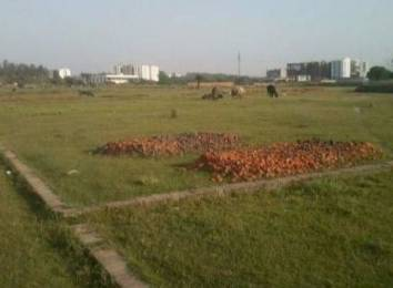 1197 sqft, Plot in Builder Project Zirakpur punjab, Chandigarh at Rs. 42.0000 Lacs
