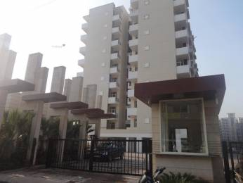 1510 sqft, 3 bhk Apartment in SBP Southcity VIP Rd, Zirakpur at Rs. 35.0000 Lacs