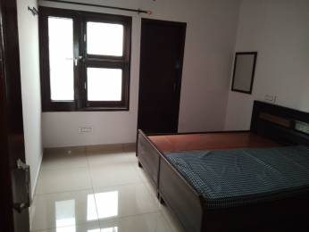 1000 sqft, 1 bhk Apartment in Builder Project Pakhowal road, Ludhiana at Rs. 7000