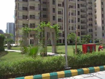1225 sqft, 3 bhk Apartment in SCC SCC Sapphire Raj Nagar Extension, Ghaziabad at Rs. 36.7500 Lacs