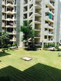 1880 sqft, 3 bhk Apartment in Builder Project Pakhowal road, Ludhiana at Rs. 22000