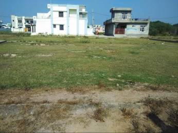 1980 sqft, Plot in Builder Project Sanour, Patiala at Rs. 17.0000 Lacs