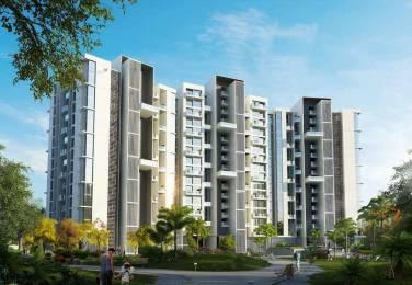 1114 sqft, 2 bhk Apartment in Concord Prima Domus Balewadi, Pune at Rs. 71.8200 Lacs