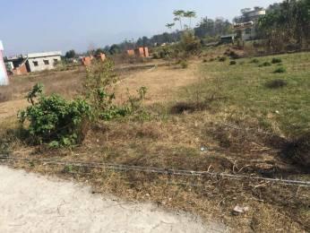 1926 sqft, Plot in Builder Project Dehradun Haridwar Road, Dehradun at Rs. 20.0000 Lacs