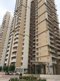1370 sqft, 3 bhk Apartment in Builder Mahagun Mywoods Gaur City 2 Noida Extn, Noida at Rs. 9400