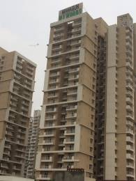 1235 sqft, 3 bhk Apartment in Builder Mahagun Mywoods Gaur City Noida Extension Greater noida, Noida at Rs. 9000