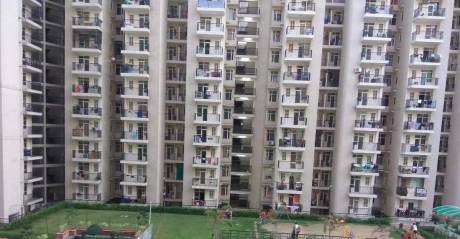 1175 sqft, 2 bhk Apartment in Builder Galaxy North Avenue 2 Gaur City 2 Noida Extension Greater noida, Noida at Rs. 9500