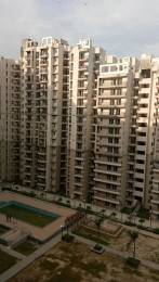 925 sqft, 2 bhk Apartment in Builder Galaxy North Avenue II Gaur City 2 Noida Extension Greater noida, Noida at Rs. 9500