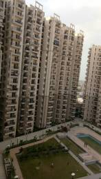 925 sqft, 2 bhk Apartment in Builder Galaxy North Avenue II Gaur City Noida Extension Greater noida, Noida at Rs. 9500