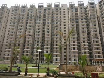1055 sqft, 2 bhk Apartment in Builder Gaur City 2 12th Avenue Gaur City Noida Extension Greater noida, Noida at Rs. 9500