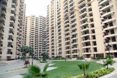 1600 sqft, 3 bhk Apartment in Builder Gaur City 2 11th Avenue Gaur City Noida Extension Greater noida, Noida at Rs. 9500