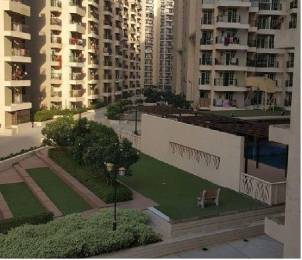 1055 sqft, 2 bhk Apartment in Builder Gaur City 12th Avenue Gaur City Noida Extension Greater Noida Gaur City 2, Greater Noida at Rs. 8500