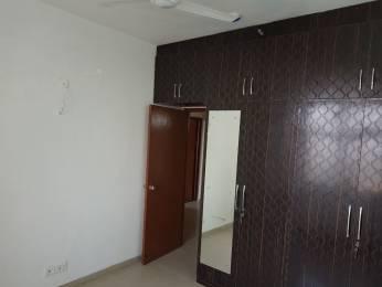 1545 sqft, 3 bhk Apartment in Builder Mahagun Mywoods Gaur City Noida Extension Greater Noida Gaur City 2, Greater Noida at Rs. 10000
