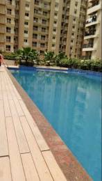 1560 sqft, 3 bhk Apartment in Builder Gaur City 6th Avenue Gaur City Noida Extension Greater Noida Gaur City 1, Greater Noida at Rs. 11000